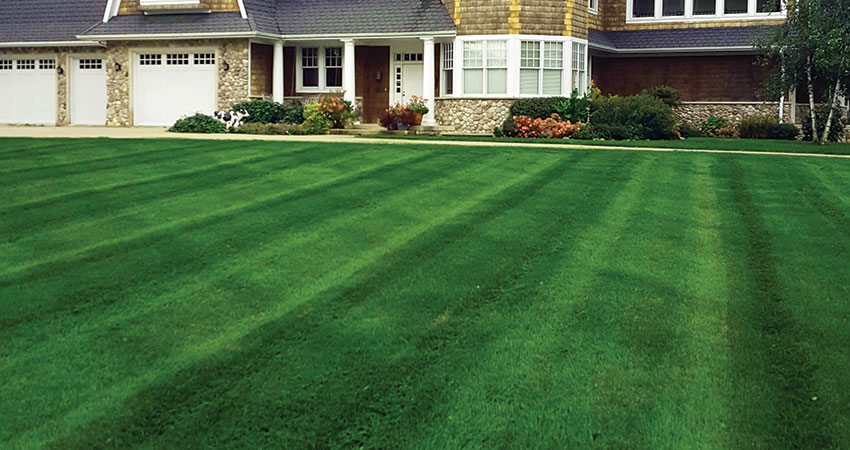 Country Club Lawn Care Landscape Mowing Services Feature